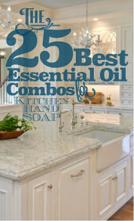 25 best DIY YLEO flavor combos for DIY kitchen soap!